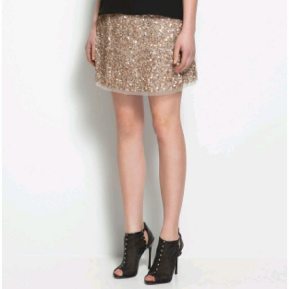 71562bcbec5f Zara Skirts | Sequin Mini Skirt | Poshmark